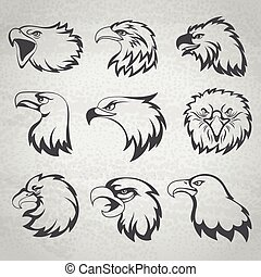 Hawk, falcon or eagle head mascot set vector illustration...