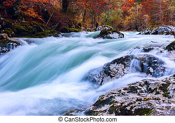 Canyon Mostnica near lake Bohinj in Slovenia (Mostnice...