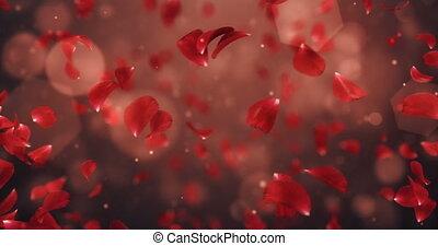 Whirl Flying Romantic Dark Red Rose Flower Petals Background Loop 4k