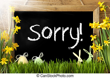 Sunny Narcissus, Easter Egg, Bunny, Text Sorry - Blackboard...