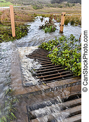 Storm water flows into drain near road