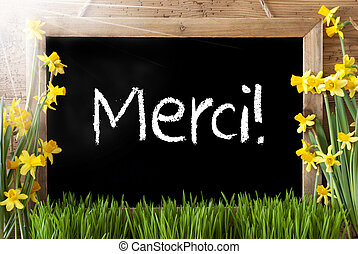Sunny Spring Narcissus, Chalkboard, Merci Means Thank You -...