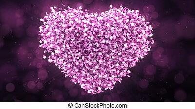 Pink Rose Sakura Flower Petals In Lovely Heart Shape Background Loop