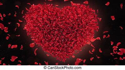 Red Rose Falling Flower Petals In Lovely Heart Shape Background Loop