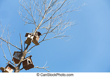 Tenement wooden houses for birds on a dry tree