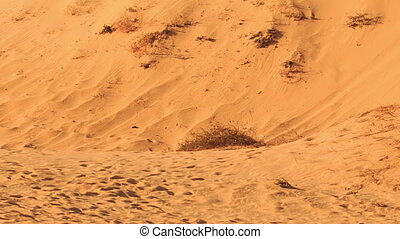 Closeup Camera Moves from Foot to Sand Dune Crest - closeup...