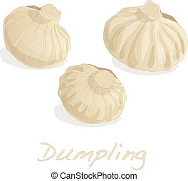 Dumpling vector illustration. Isolated.