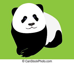 young panda on a light green background