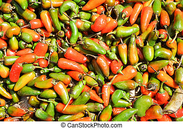 Chili peppers at the market of Devaraja at Mysore on India