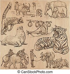 animals - an hand drawn vector pack, collection. - An hand...