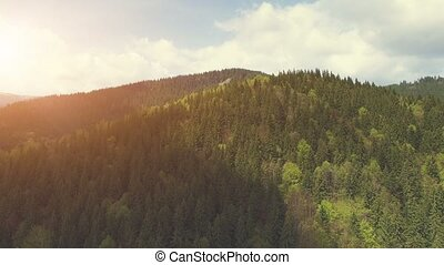 Aerial Flight in Carpathian mountains - Aerial Drone Footage...
