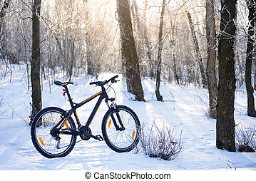 Mountain Bike on the Snowy Trail in the Beautiful Winter Forest Lit by Sun