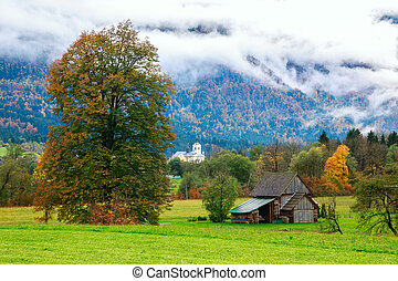 Idyllic landscape in the Alps with green meadows, trees,...