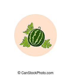 Icon Colorful Watermelon - Watermelon , Round Icon Colorful...
