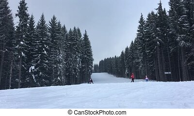 People ride on the track on ski resort