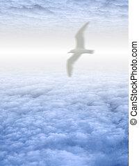 Bird in serene cloudscape - Bird soars in serene cloudscape