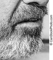 overgrown beard man