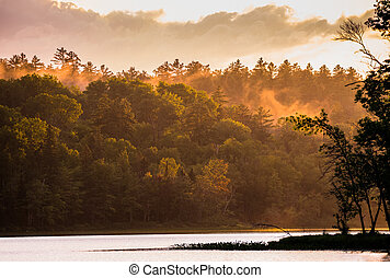 Dramatic color sunset in forest after thunderstorm on corry lake.