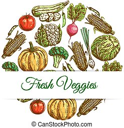 Fresh veggies poster of vegetables harvest sketch - Veggies...