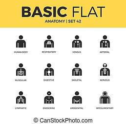 Basic set of anatomy icons - Basic set of human body, venous...
