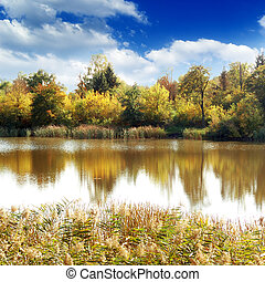 Lake, autumn wood and the blue sky...