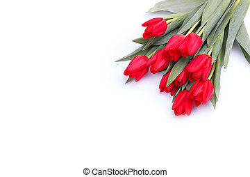bouquet of red tulips over white background.top view with...