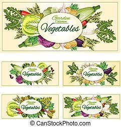 Vegetables, greens, veggies vegetarian banners set -...