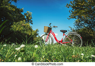 red bicycle in the garden