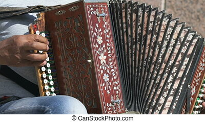 A man playing accordion in summer outdoors - A man sitting...