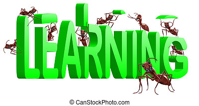 ants building 3d word learning