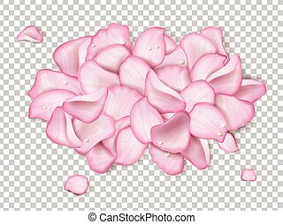 Pink rose petals with glitter water drop isolated on...
