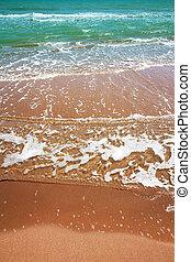 水, 清楚, 海灘