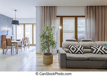 Open iving room with grey sofa - Open spacious living room...