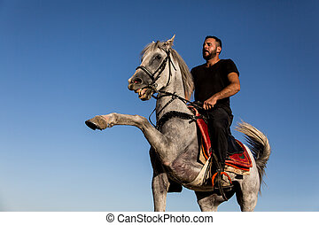 A turkish horse - Costume of the Turks and horse riding