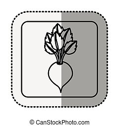 monochrome square contour with middle shadow sticker with beet vegetable