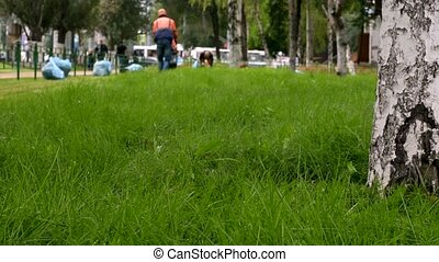 Lawnmower cutting green grass on the background of city...