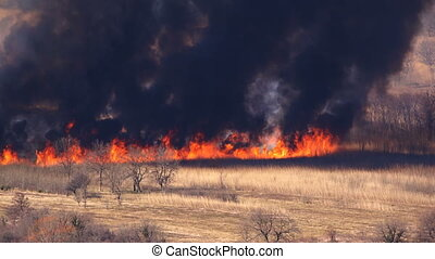 a fast-moving fire on dry grass field, long distance shoot