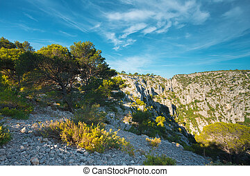 Beautiful nature of Calanques on the azure coast of France....