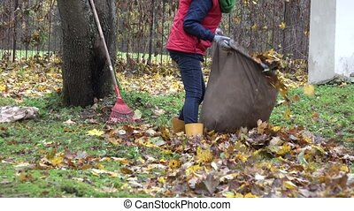 woman stuff dry leaves into material sack and carry it on...