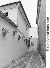 Ronda (Andalucia, Spain): old typical street with white...
