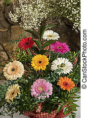 Lovely bouquet of beautiful and colorful gerberas