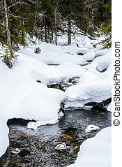 Winter stream with deep snow and water flows underneath.