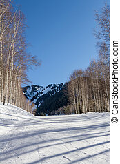downhill skiing in the winter in the mountains of Kazakhstan