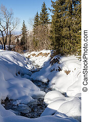 mountain stream under the snow among the trees