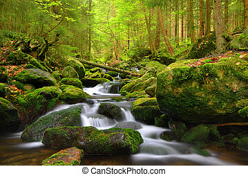 Mountain stream in Sumava-Czech Republic