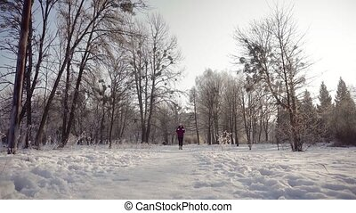 Woman Walks in Winter Park - Sunny winter day shot of...