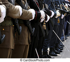 Italian armed forces with Alpine troops and the police...