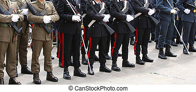 deployment of the Italian armed forces with Alpine troops...