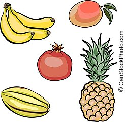 Set of tropical fruits hand drawn