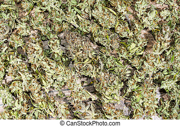 Cannabis buds background flat lay - Dry green organic...